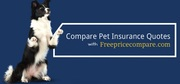 Compare Pet Insurance Quotes